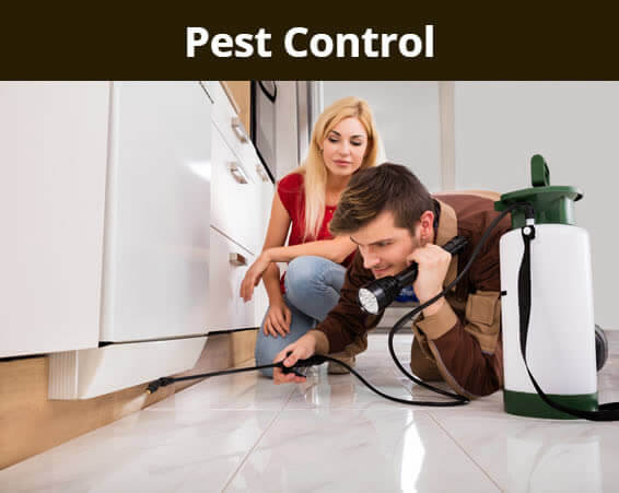 Pest Control - Spraying under an appliance.